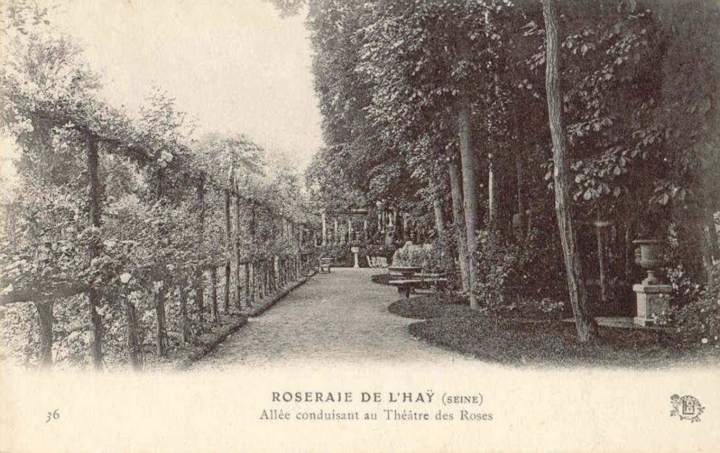 157 36 ROSERAIE DE L'HAY (SEINE) - Allee conduisant au Theatre des Roses_wp